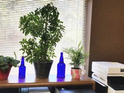 SolaraPure Blue Glass Solar Water Bottles are perfect for the office.